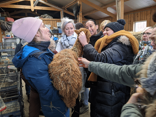 Mediation-animale-et-agriculture-sociale-4